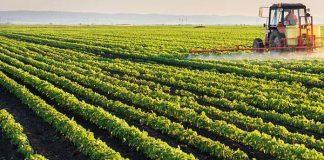 investissements agricoles privés