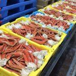 Les exportations des crabes en tunisie