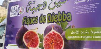 Figue de Djebba