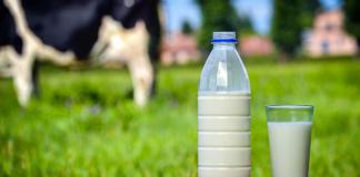 Les réserves de régulation lait