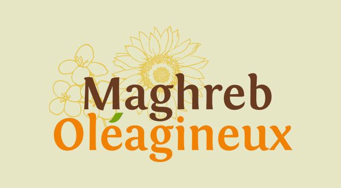 Maghreb Oléagineux