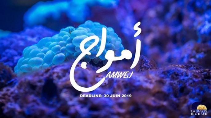 Saison bleue projets AMWEJ